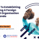 ESTABLISHING AND OPERATING A FOREIGN NOT FOR PROFIT ORGANISATION (NGO) IN UGANDA